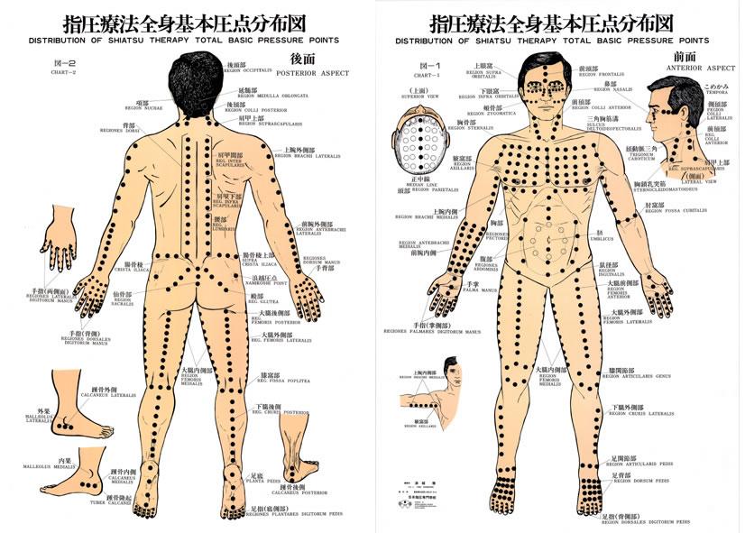 Shiatsu Total Basic Pressure Points